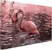 Roze flamingos in water met reflectie Canvas 30x20 cm - klein - Foto print op Canvas schilderij (Wanddecoratie woonkamer / slaapkamer) / Dieren Canvas Schilderijen