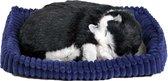 Perfect Petzzz Zwart-witte Kitten