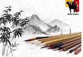Hobby Bokkie - 11 authentieke bamboe detail penselen - kwasten voor Chinese Kalligrafie - Japans Sumi schilderen - Inclusief Winsor en Newton inkt en penselenhouder cadeau idee - modelbouw, aquarel, Warhammer, acryl en olieverf - Sumi-e gewassen inkt