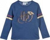 Blauw shirt - longsleeve van Harry Potter maat 152