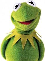 Kermit de kikker knuffel - The muppet show - 38 cm