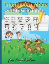 Tracing Numbers Book