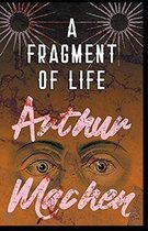 A Fragment of Life annotated