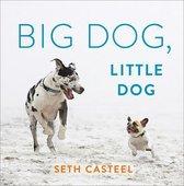 Big Dog, Little Dog