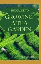 The Guide to Growing a Tea Garden
