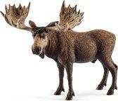 Bol Com Schleich Bergdieren 41459 Speelfigurenset Wild Life 24 5 X 8 2 X 19 Cm