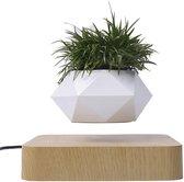 KIMO DIRECT Zwevende Bloempot - Zwevende Plant - Eikenhout - Levitating Plant - Luchtzuiverend - Plantenbak - Air Bonsai