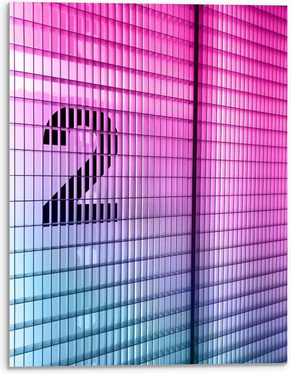 Plexiglas - Zwarte Twee op  Roze Muur - 30x40cm Foto op Plexiglas (Wanddecoratie op Plexiglas)