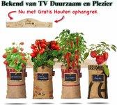 Voorjaarsactie 4x Hangtuintjes moestuin kweekset Groenten  Nu Met Gratis FSC Houten Hangrekje!!