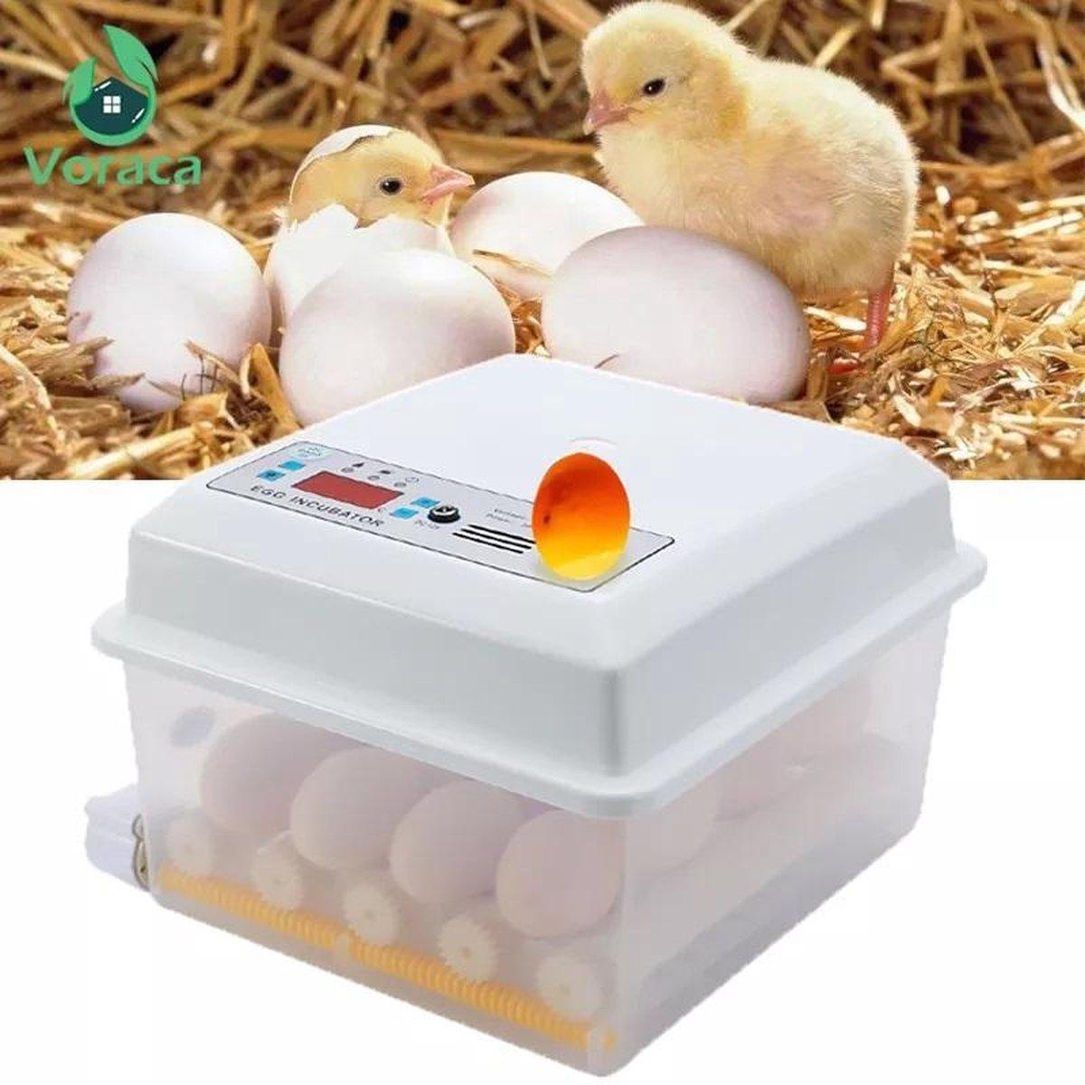 Broedmachine met keersysteem, 12 eieren