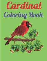 Cardinal Coloring Book
