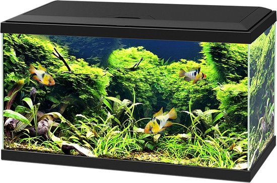 Ciano Aquarium 60 Led Cf80 60x30x34 cm - Aquaria - Zwart