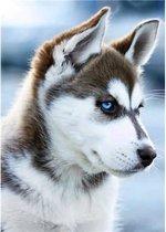 Wizardi Diamond Painting Snow Dog WD088
