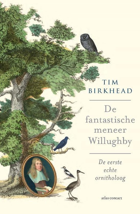 De fantastische Mr. Willughby - Tim Birkhead |