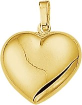 The Jewelry Collection Hanger Hart - Goud