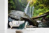Rotsblok in de jungle van het Nationaal Park Gunung Rinjani in Indonesië fotobehang vinyl breedte 420 cm x hoogte 280 cm - Foto print op behang (in 7 formaten beschikbaar)