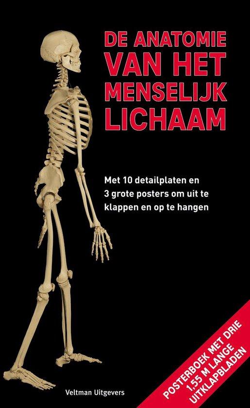 De anatomie van het menselijk lichaam - Roland Muhlbauer | Readingchampions.org.uk