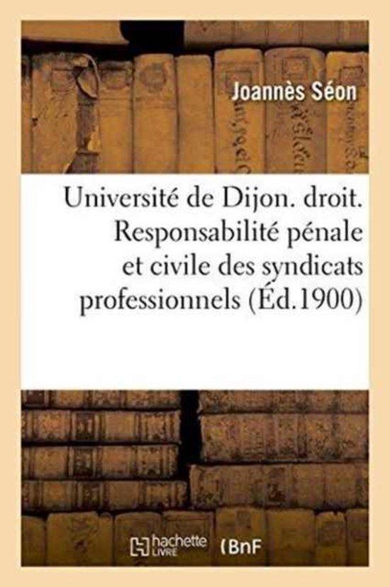 Universite de Dijon. Faculte de Droit. Responsabilite Penale Et Civile Des Syndicats Professionnels