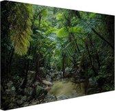 Riviertje in tropische jungle Canvas 80x60 cm - Foto print op Canvas schilderij (Wanddecoratie woonkamer / slaapkamer)