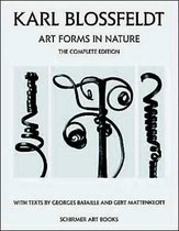 Karl Blossfeldt: Art Forms in Nature