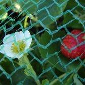 ProGarden - Vogelnet - Anti-vogel net - 400cm x 500cm - Vogelgaas - Bird net - Tuinnet - Vijvernet - Fruitnet - Plantennet - Bloemennet - Tuin net tegen vogels - Anti vogel net - Vijvernetten - Tuinspullen - Vijverbescherming - Moestuinnet - Netten