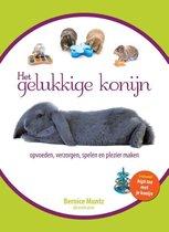 Boek het gelukkige konijn 21x15x2 cm