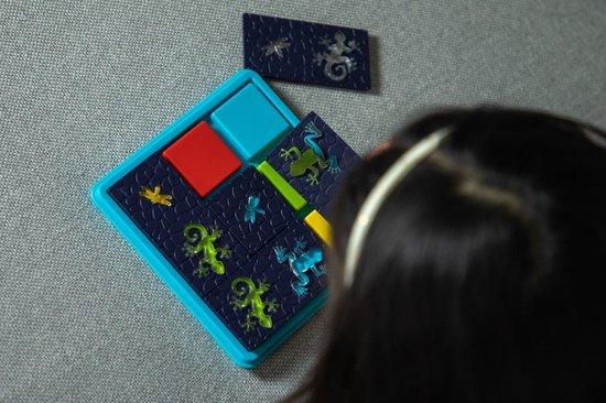 SmartGames Colour Catch (60 opdrachten)