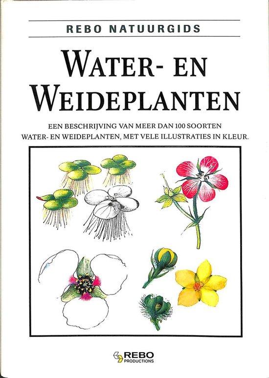 WATER-EN WEIDEPLANTEN-NATUURGIDS - Vetvicka  