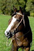 Hoofdstel met versiering van ruwe huid donkerbruin Pony