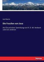 Die Fossilen von Java