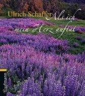 Boek cover Als ich mein Herz auftat van Ulrich Schaffer