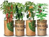 Complete Kweekset 4x Stadstuintjes hete pepers kweken, gemaakt van ♻️ theezakken uit India!