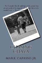 Chasing Chaya