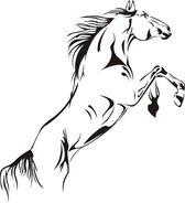 Muursticker springend paard. Paarden, dieren, pvc sticker, horse, jockey, paard, 58 x 75 cm, nr113
