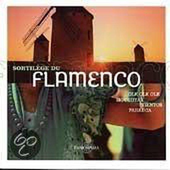 Passion Des Flamenco