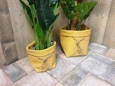Set van 2 plantenzakken oker geel