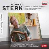 21St Century Portraits - Norbert Sterk