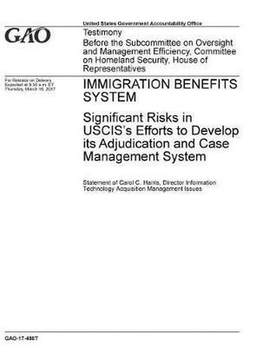 Boek cover Immigration Benefits System van U S Government Accountability Of (Paperback)