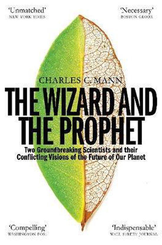 Afbeelding van The Wizard and the Prophet