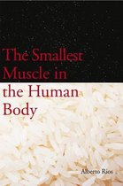 The Smallest Muscle in the Human Body