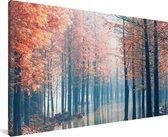 De mistige bossen van de Redwood forest bij zonsopgang in China Canvas 80x40 cm - Foto print op Canvas schilderij (Wanddecoratie woonkamer / slaapkamer)