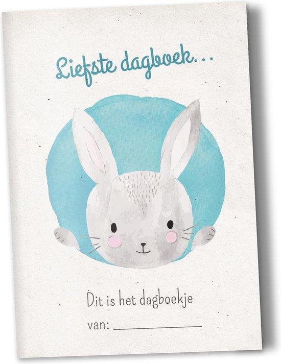 Heen en weer boekjes voor kinderopvang Creche -en oppasboek 2 stuks met konijntje - Heenenweerboekjes.be