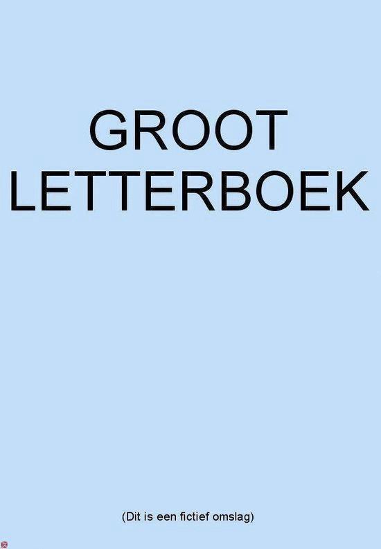 Grote letter bibliotheek 2466 - Ongrijpbare schaduw - Ina van der Beek | Fthsonline.com