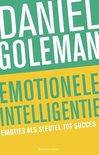 Emotionele intelligentie (Olympus)