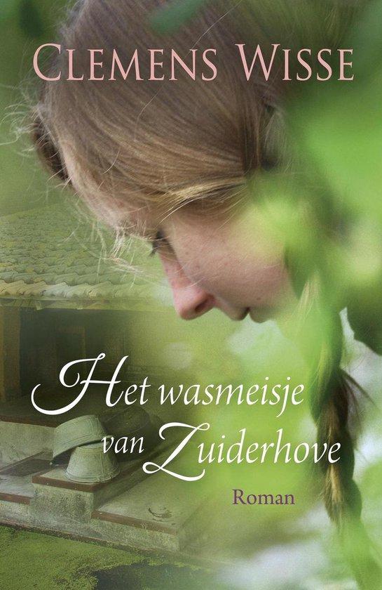Het wasmeisje van Zuiderhove - Clemens Wisse pdf epub