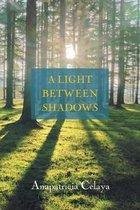 A Light between Shadows