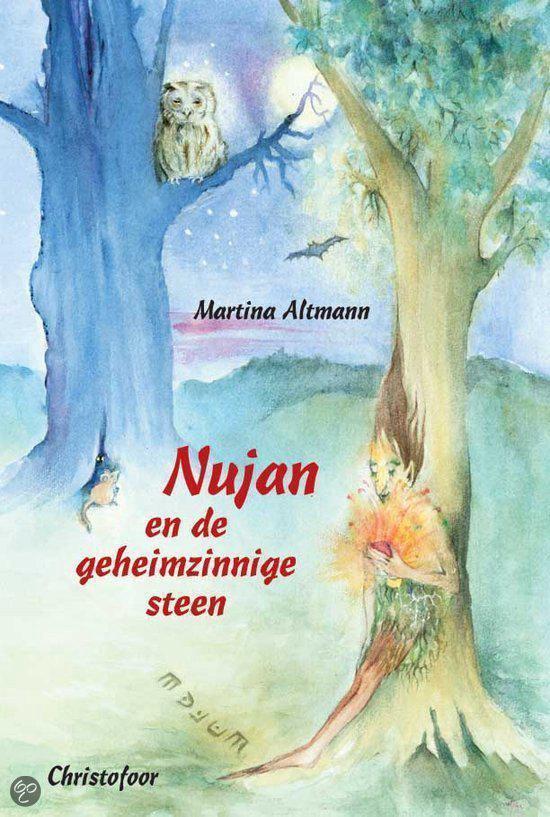 Nujan en de geheimzinnige steen - Martina Altmann | Readingchampions.org.uk
