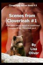 Scenes from Cloverleah #1