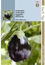 Hortitops Aubergine Black Beauty