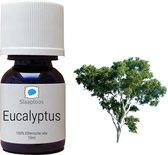 Eucalyptus Etherische Olie voor Diffuser / Verstuiver